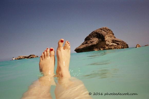 2008 Bermuda Swimming, phoebedecook.com