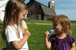 Water Popsicles, phoebedecook.com